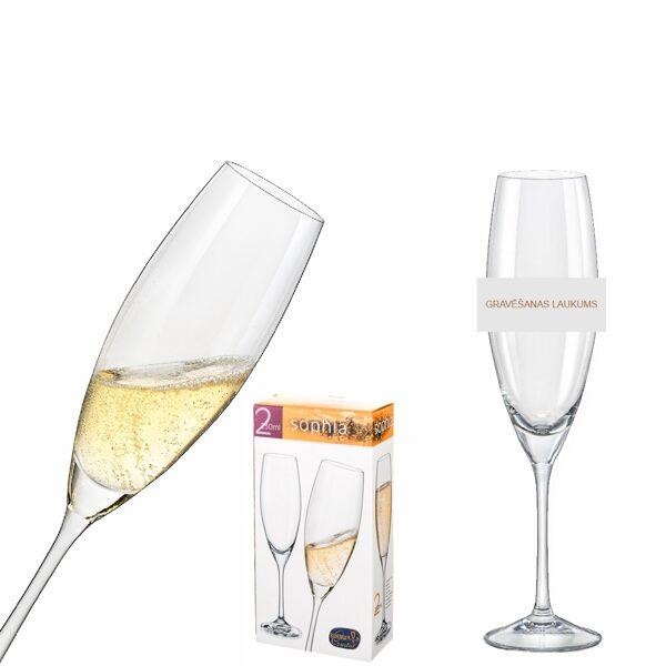 Šampanieša glāžu (2gab.) komplekts BK140184 ar gravējumu